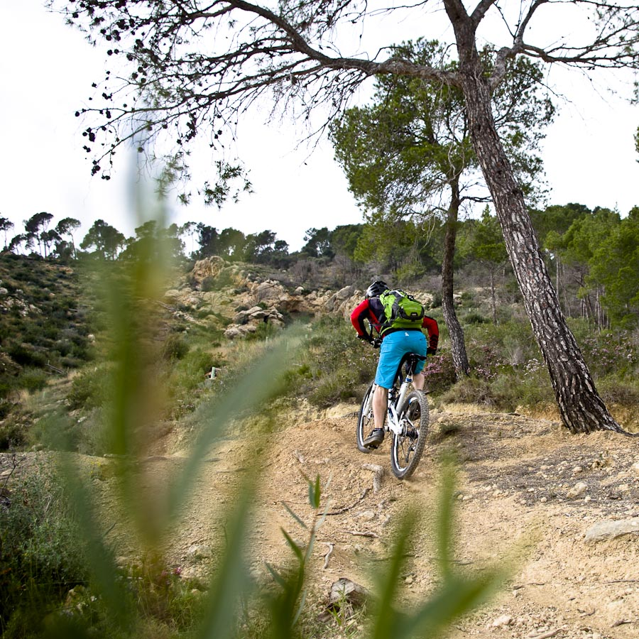 Mountainbike Touren Mallorca-1890